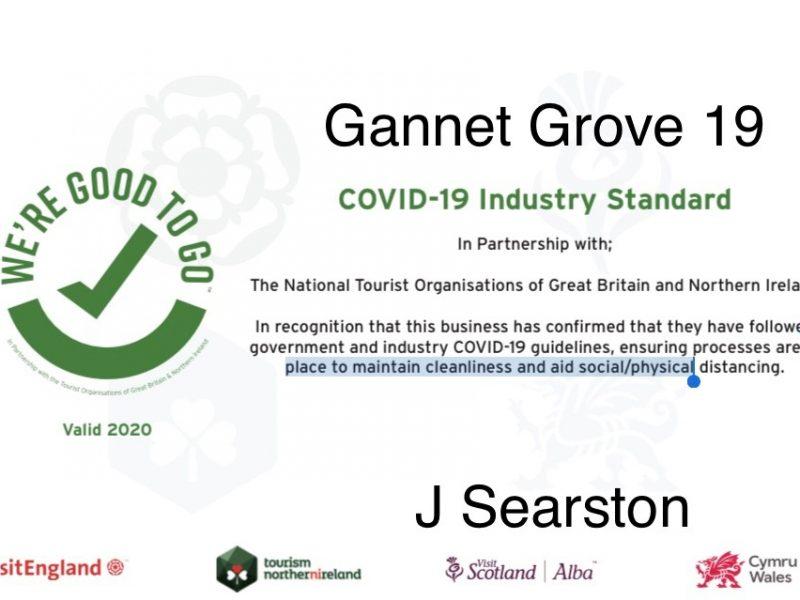 covid-g19
